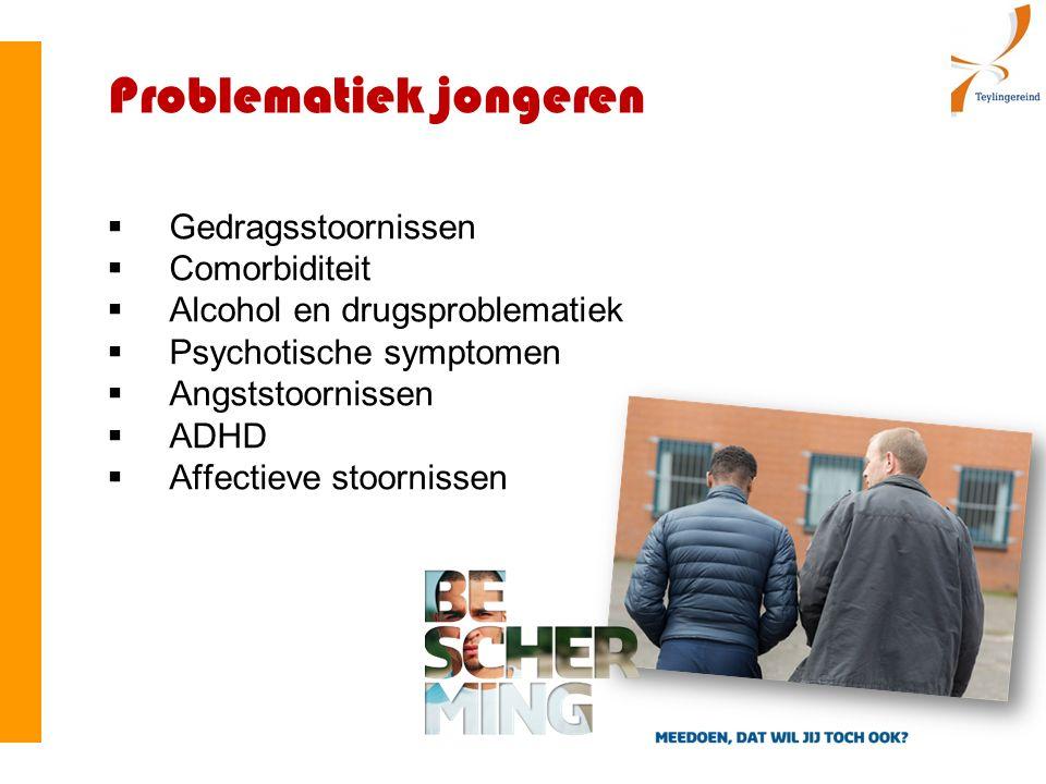 Problematiek jongeren  Gedragsstoornissen  Comorbiditeit  Alcohol en drugsproblematiek  Psychotische symptomen  Angststoornissen  ADHD  Affectieve stoornissen
