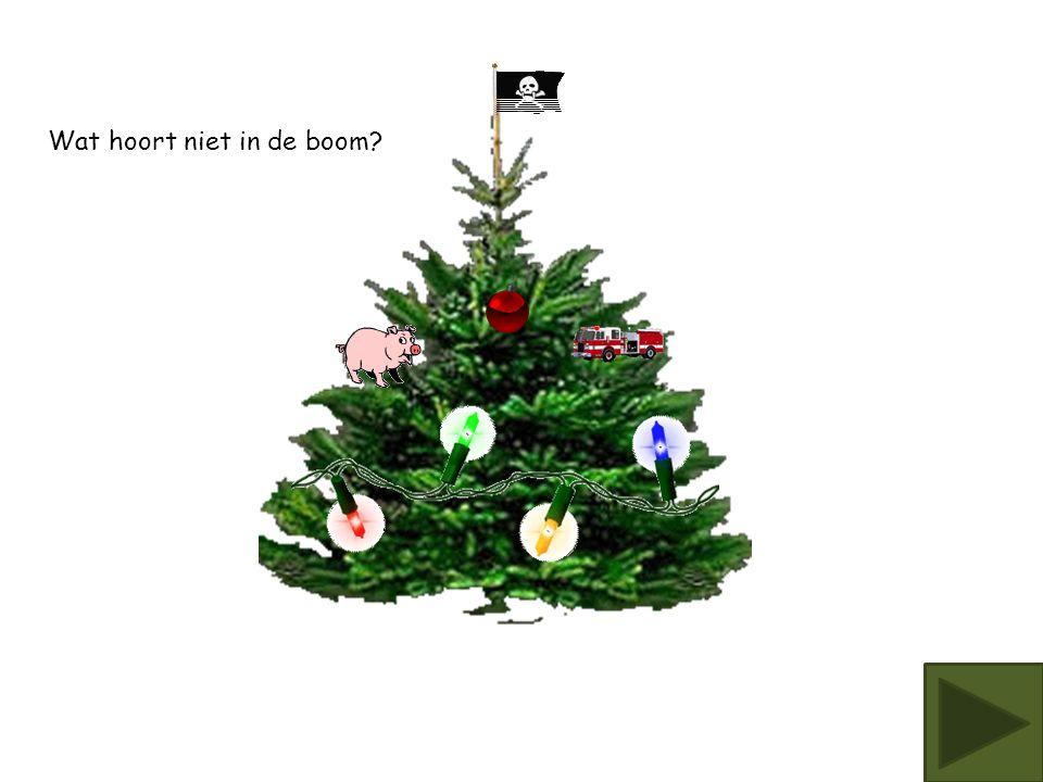 Wat hoort niet in de boom?