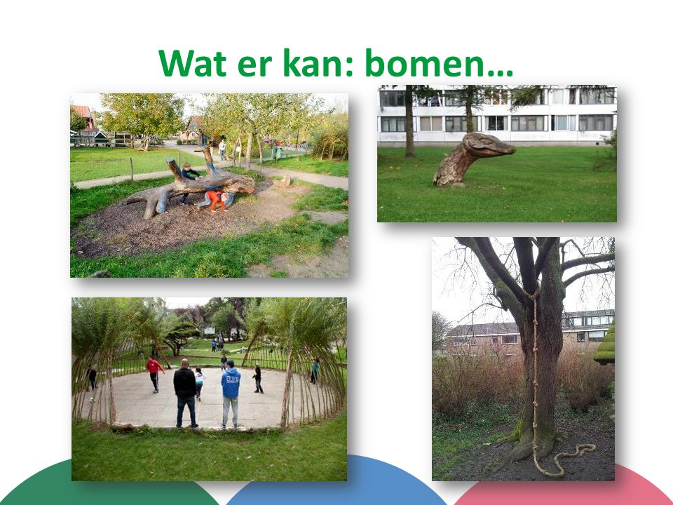 Wat er kan: bomen…
