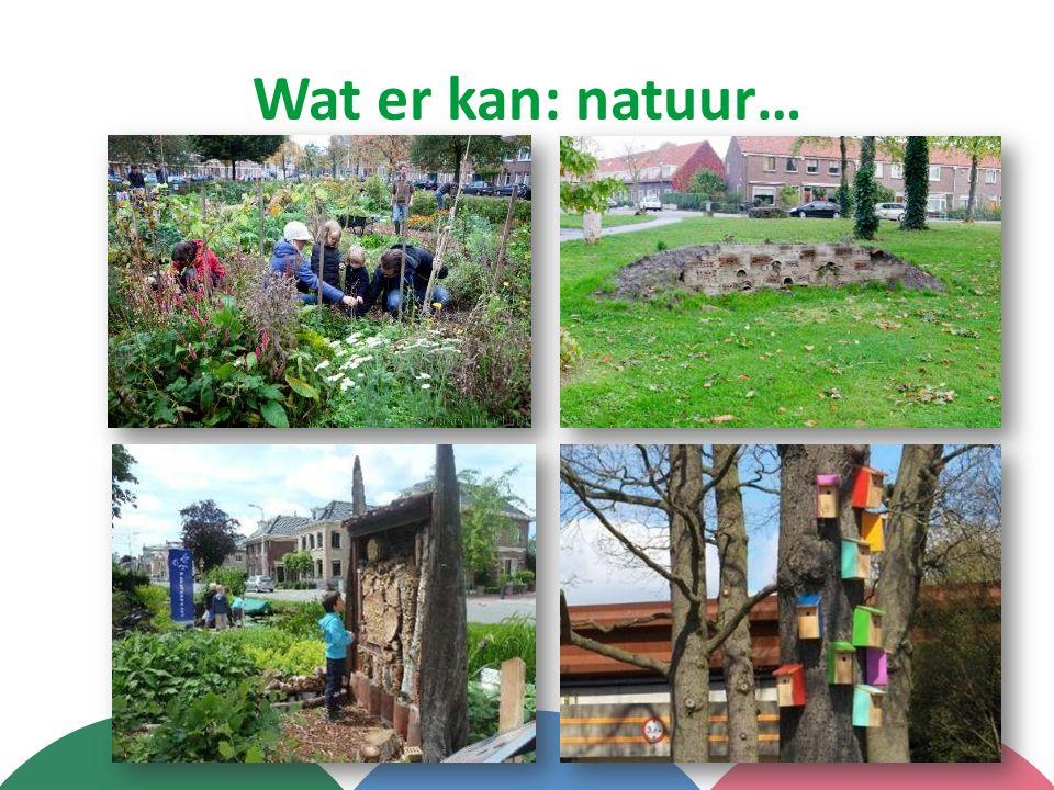Wat er kan: natuur…