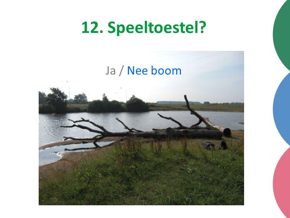 12. Speeltoestel Ja / Nee boom