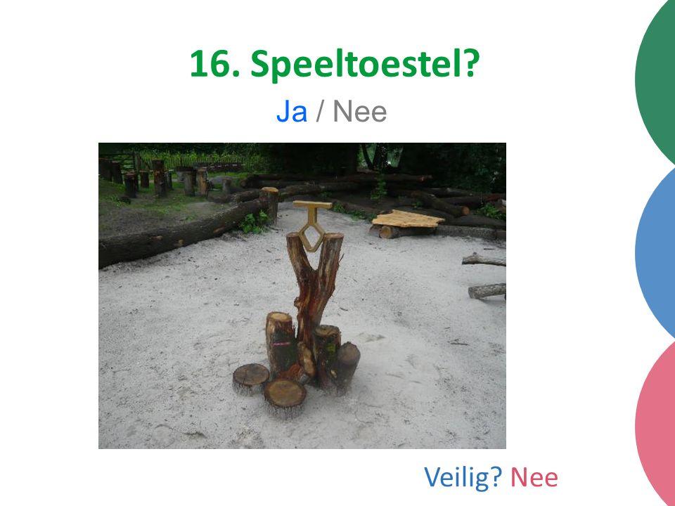16. Speeltoestel Ja / Nee Veilig Nee