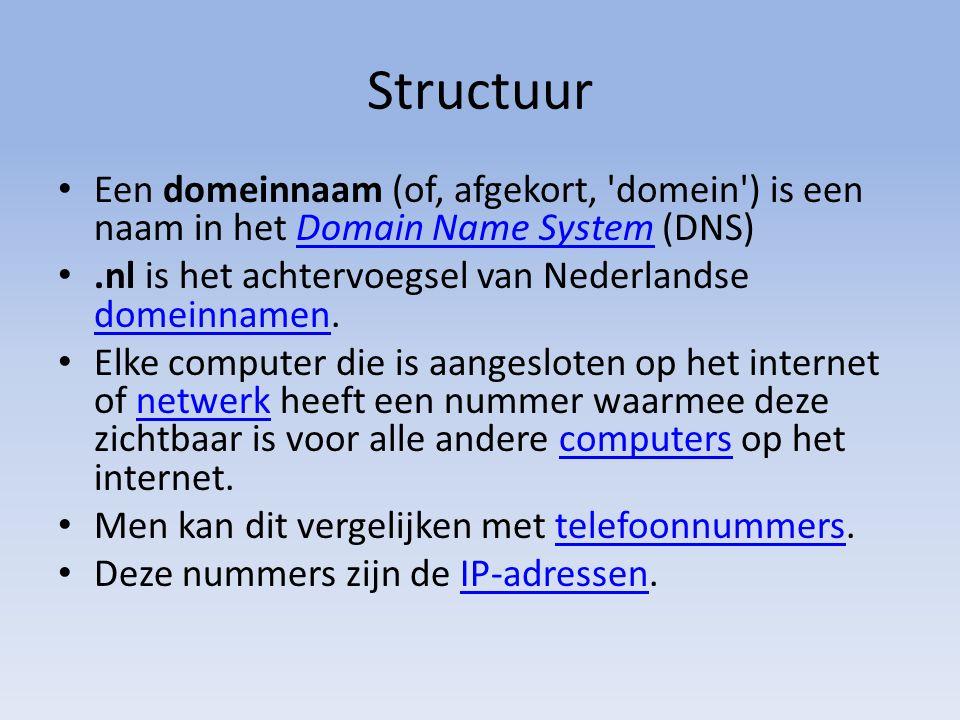 Structuur Een domeinnaam (of, afgekort, domein ) is een naam in het Domain Name System (DNS)Domain Name System.nl is het achtervoegsel van Nederlandse domeinnamen.