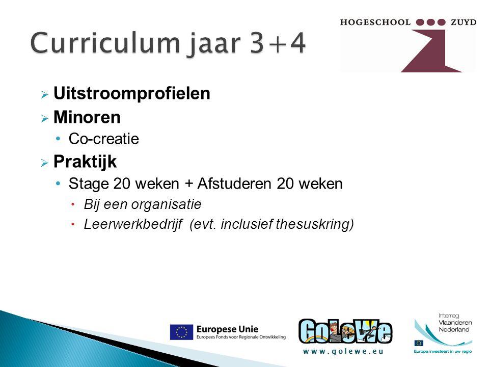 www.golewe.eu  Uitstroomprofielen  Minoren Co-creatie  Praktijk Stage 20 weken + Afstuderen 20 weken  Bij een organisatie  Leerwerkbedrijf (evt.