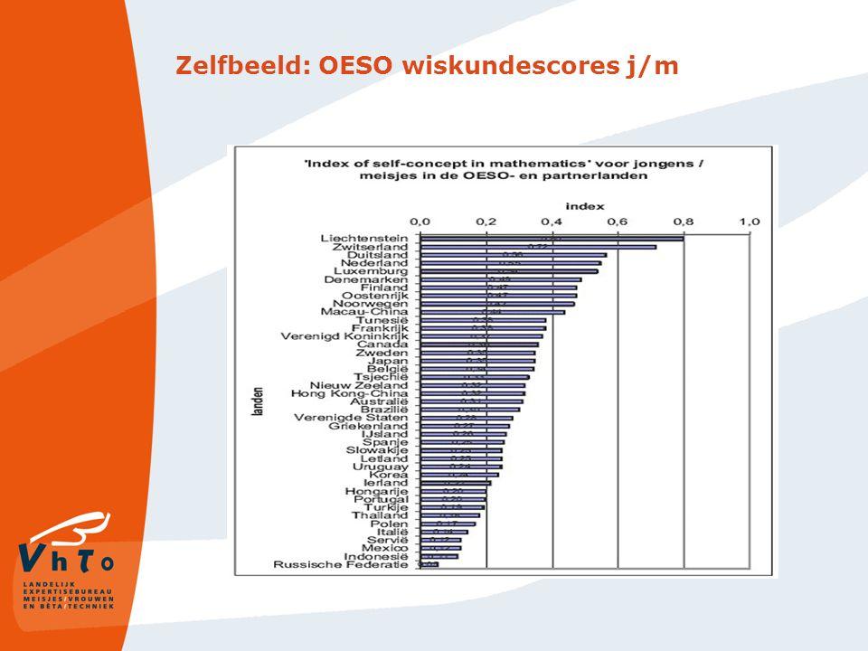 Waarom kiezen in Nederland zo veel minder meisjes voor W&T dan jongens.