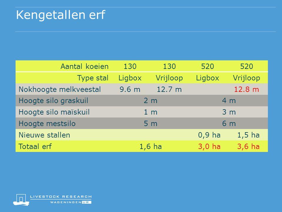 Kengetallen erf Aantal koeien130 520 Type stalLigboxVrijloopLigboxVrijloop Nokhoogte melkveestal9.6 m12.7 m12.8 m Hoogte silo graskuil2 m4 m Hoogte silo maïskuil1 m3 m Hoogte mestsilo5 m6 m Nieuwe stallen0,9 ha1,5 ha Totaal erf1,6 ha3,0 ha3,6 ha