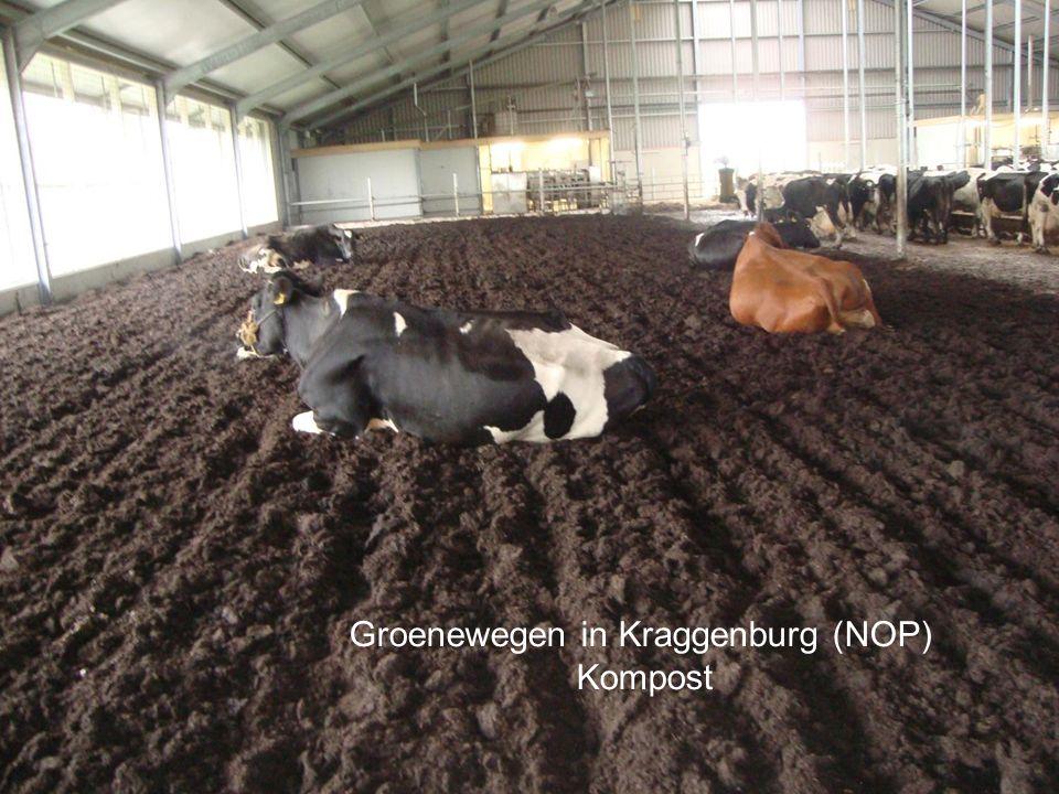 Groenewegen in Kraggenburg (NOP) Kompost