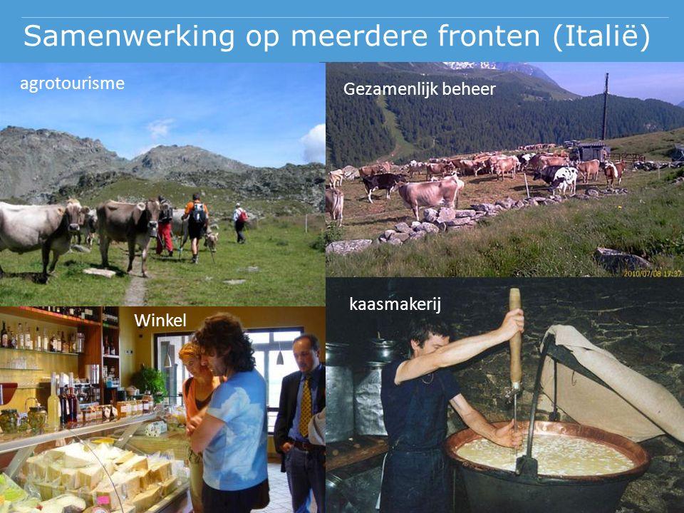 Samenwerking op meerdere fronten (Italië) agrotourisme Gezamenlijk beheer kaasmakerij Winkel