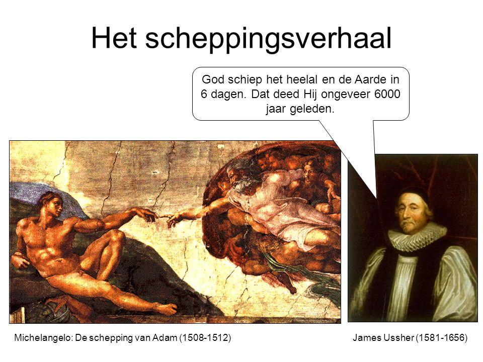 Homologie of het bouwplan Gods?