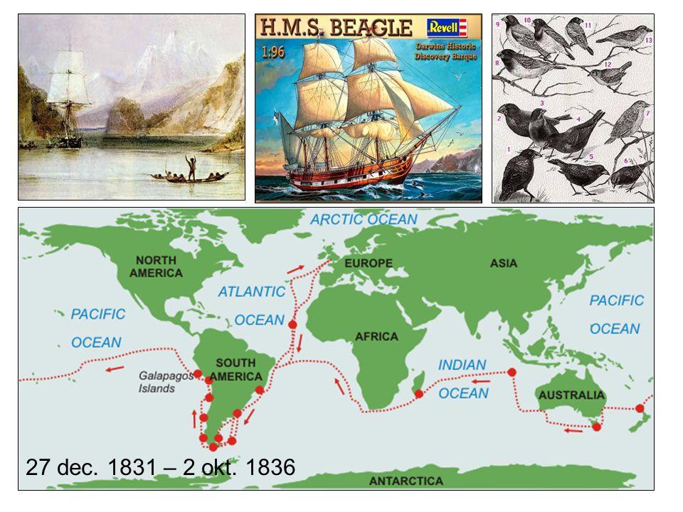 Darwin's theorieën: evolutietheorie Theorie van natuurlijke selectie