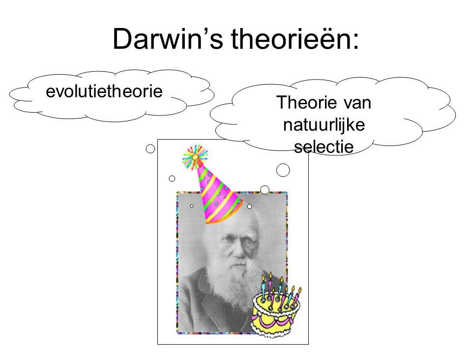 Evolutionaire ladders en levensbomen Ladders en boom met de mens bovenaan Moderne 'struik' (onder) Darwin's boom