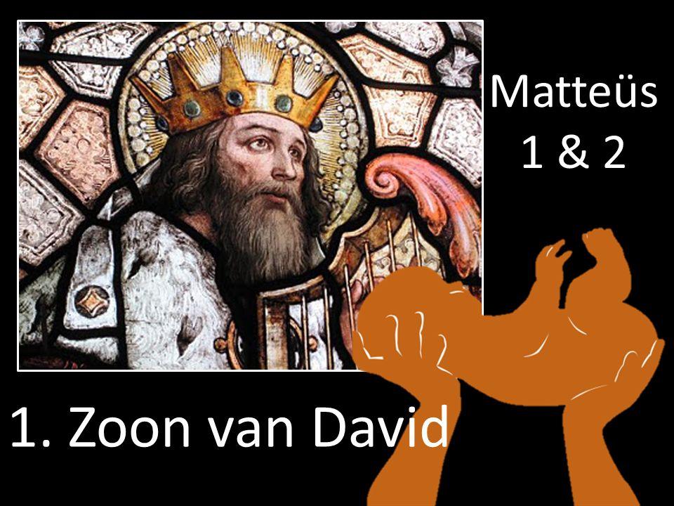 1. Zoon van David Matteüs 1 & 2