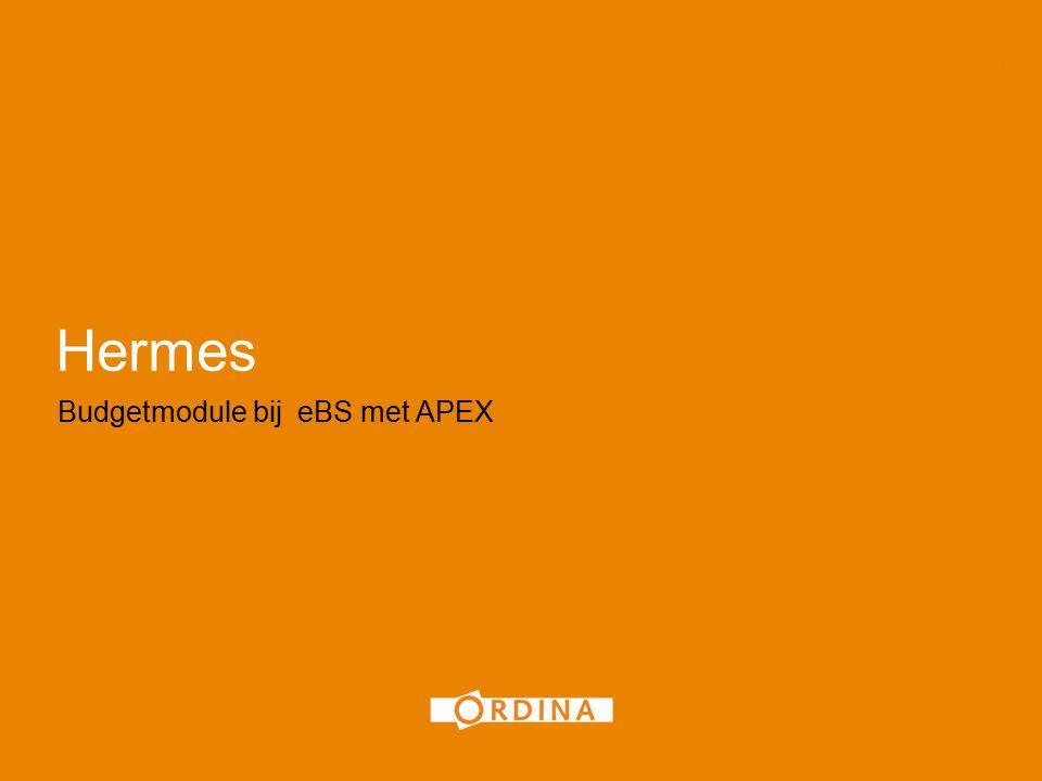 Hermes Budgetmodule bij eBS met APEX 1