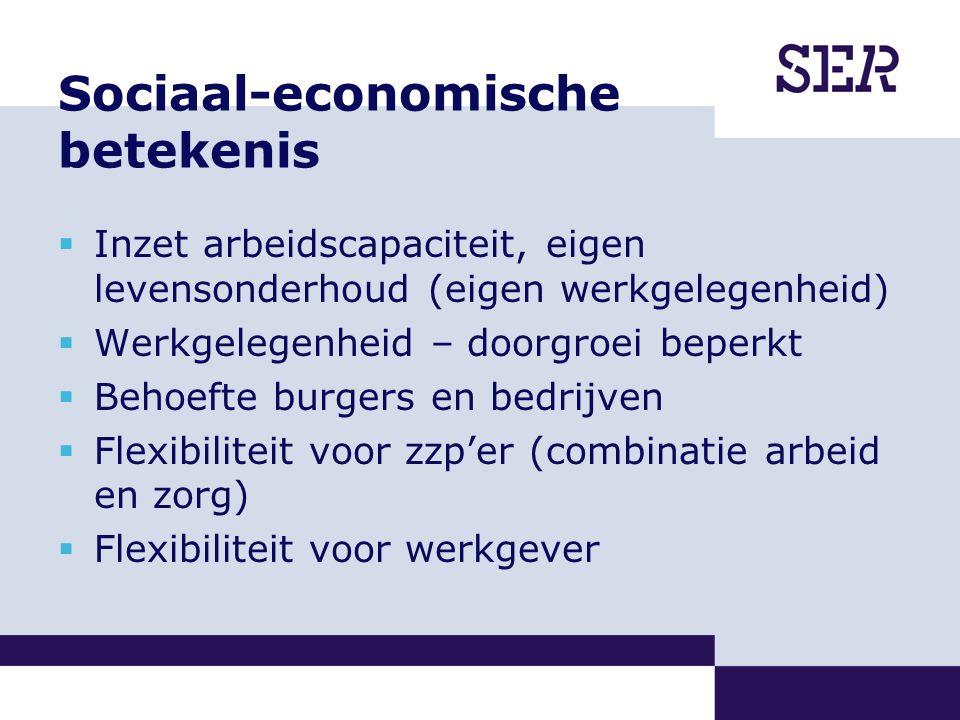 Sociaal-economische betekenis  Inzet arbeidscapaciteit, eigen levensonderhoud (eigen werkgelegenheid)  Werkgelegenheid – doorgroei beperkt  Behoefte burgers en bedrijven  Flexibiliteit voor zzp'er (combinatie arbeid en zorg)  Flexibiliteit voor werkgever