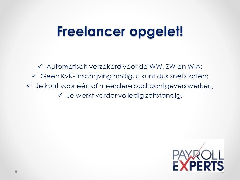 Freelancer opgelet.
