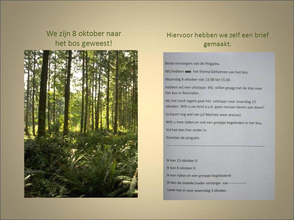 We zijn 8 oktober naar het bos geweest! Hiervoor hebben we zelf een brief gemaakt.