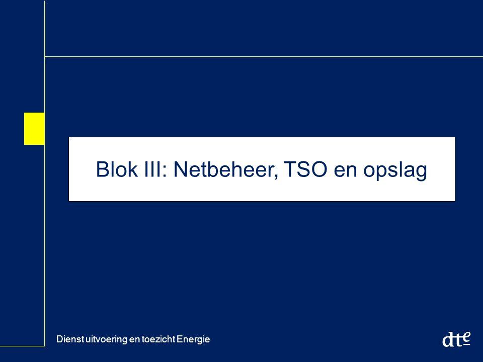 Dienst uitvoering en toezicht Energie Blok III: Netbeheer, TSO en opslag