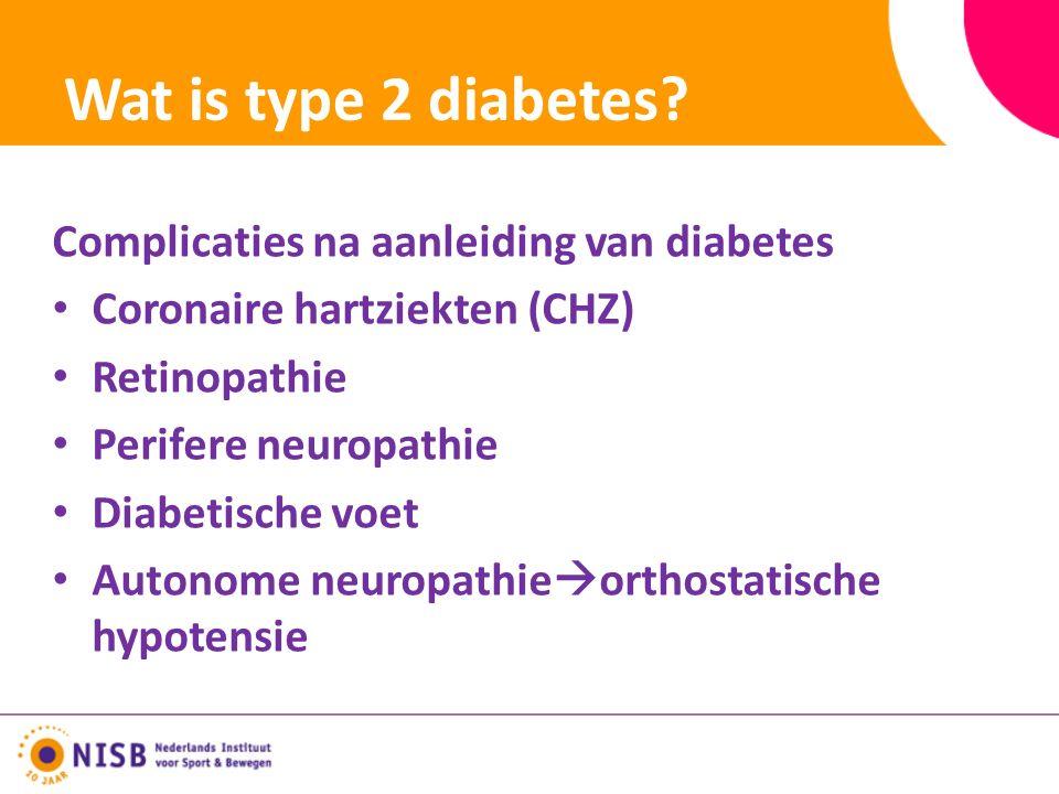 Wat is type 2 diabetes.