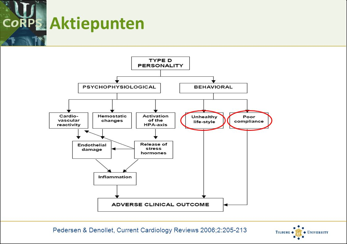 Aktiepunten Pedersen & Denollet, Current Cardiology Reviews 2006;2:205-213