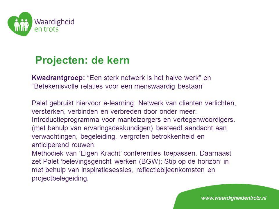 Projecten: de kern Kwadrantgroep: Een sterk netwerk is het halve werk en Betekenisvolle relaties voor een menswaardig bestaan Palet gebruikt hiervoor e-learning.