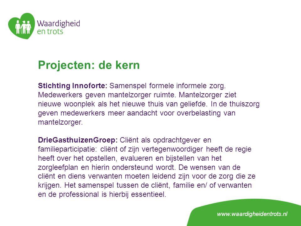 Projecten: de kern Stichting Innoforte: Samenspel formele informele zorg.