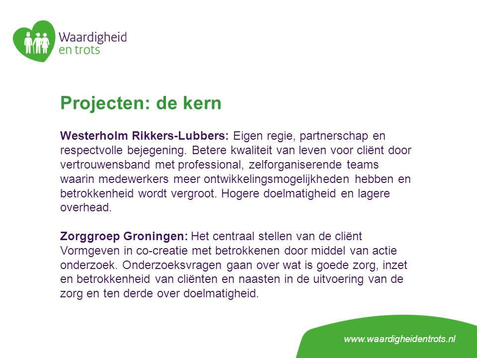 Projecten: de kern Westerholm Rikkers-Lubbers: Eigen regie, partnerschap en respectvolle bejegening.