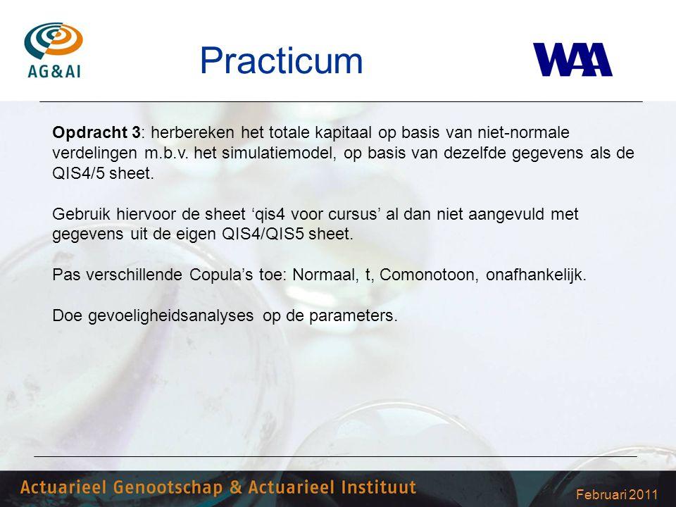 Februari 2011 Practicum Opdracht 3: herbereken het totale kapitaal op basis van niet-normale verdelingen m.b.v. het simulatiemodel, op basis van dezel