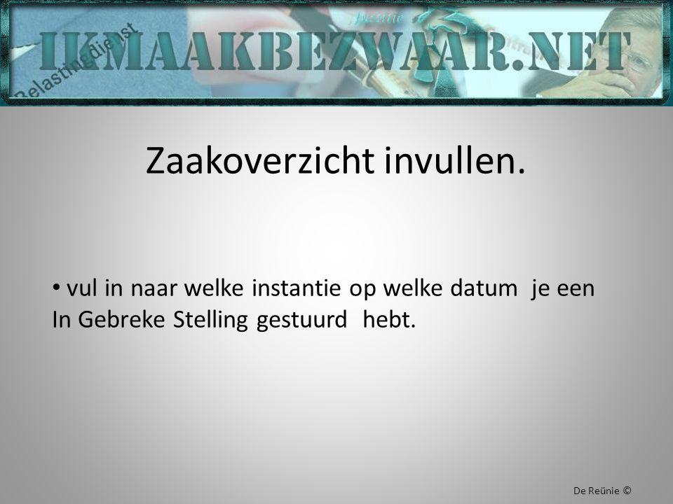 Zaakoverzicht invullen. vul in naar welke instantie op welke datum je een In Gebreke Stelling gestuurd hebt. De Reünie ©