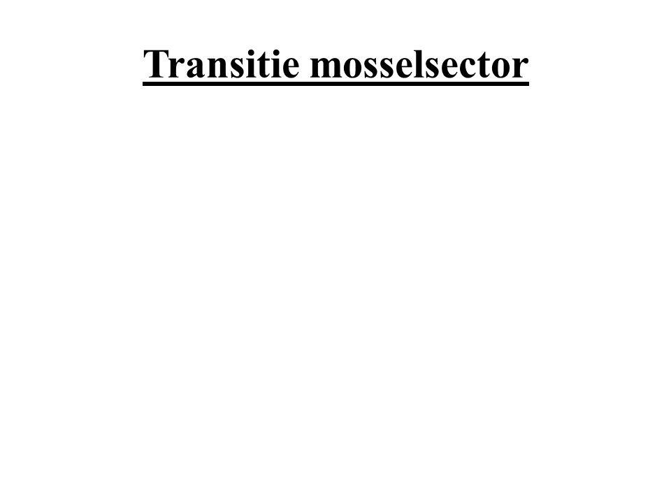 Transitie mosselsector