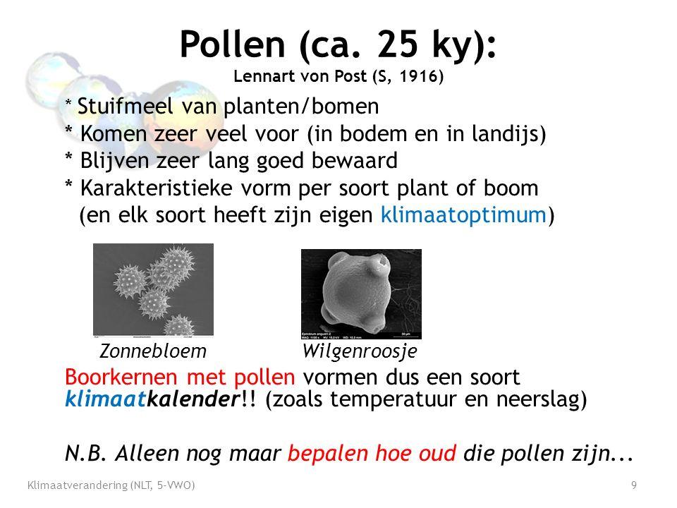 Pollen (ca.
