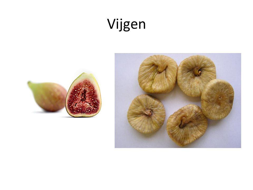 Vijgen
