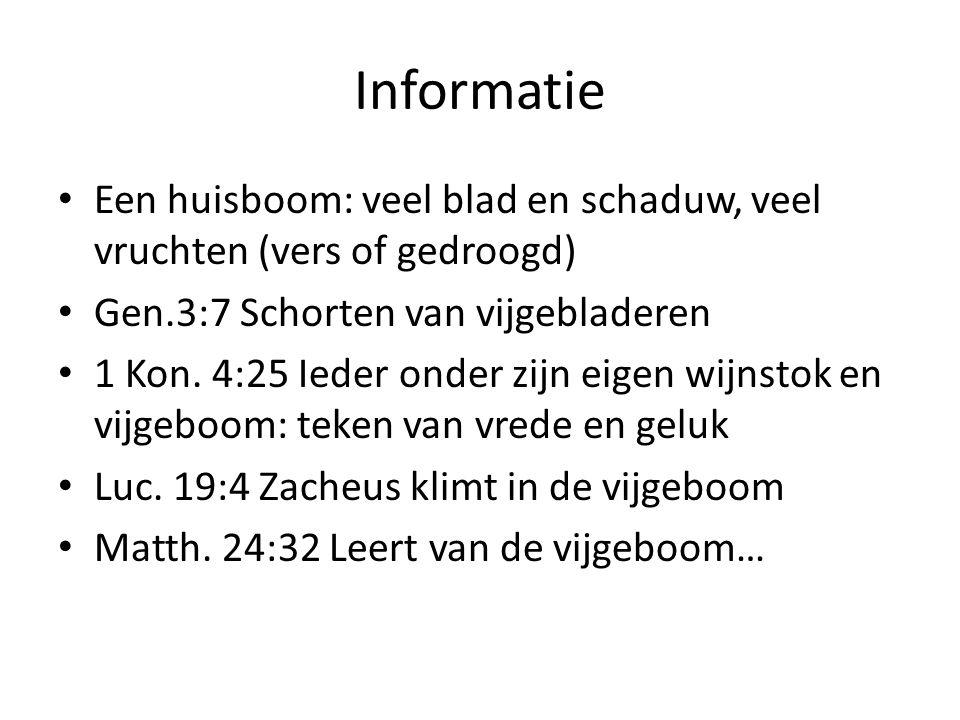 Informatie Een huisboom: veel blad en schaduw, veel vruchten (vers of gedroogd) Gen.3:7 Schorten van vijgebladeren 1 Kon.