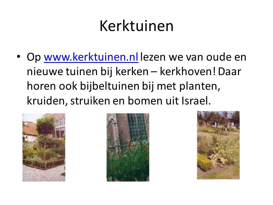 Kerktuinen Op www.kerktuinen.nl lezen we van oude en nieuwe tuinen bij kerken – kerkhoven.