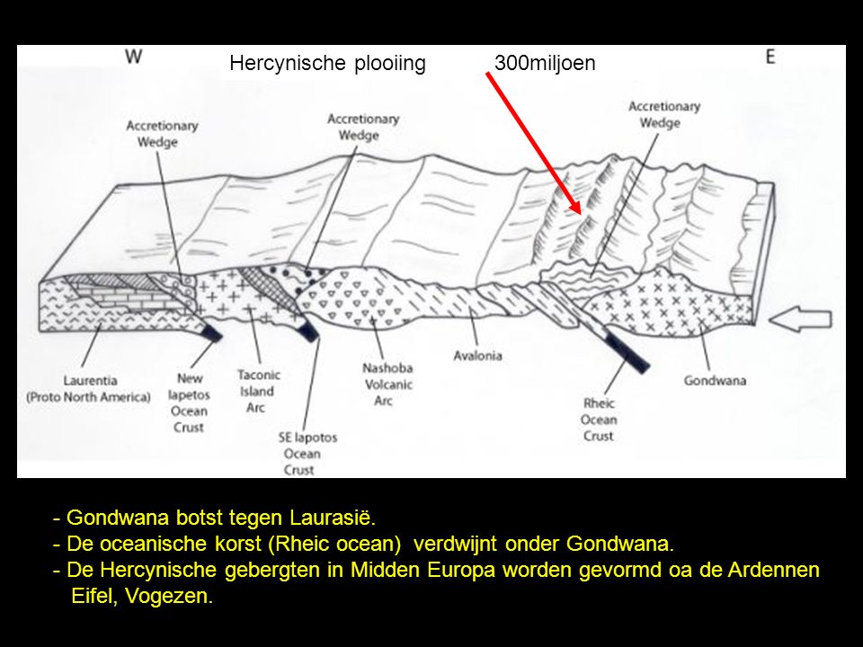 - Gondwana botst tegen Laurasië. - De oceanische korst (Rheic ocean) verdwijnt onder Gondwana. - De Hercynische gebergten in Midden Europa worden gevo