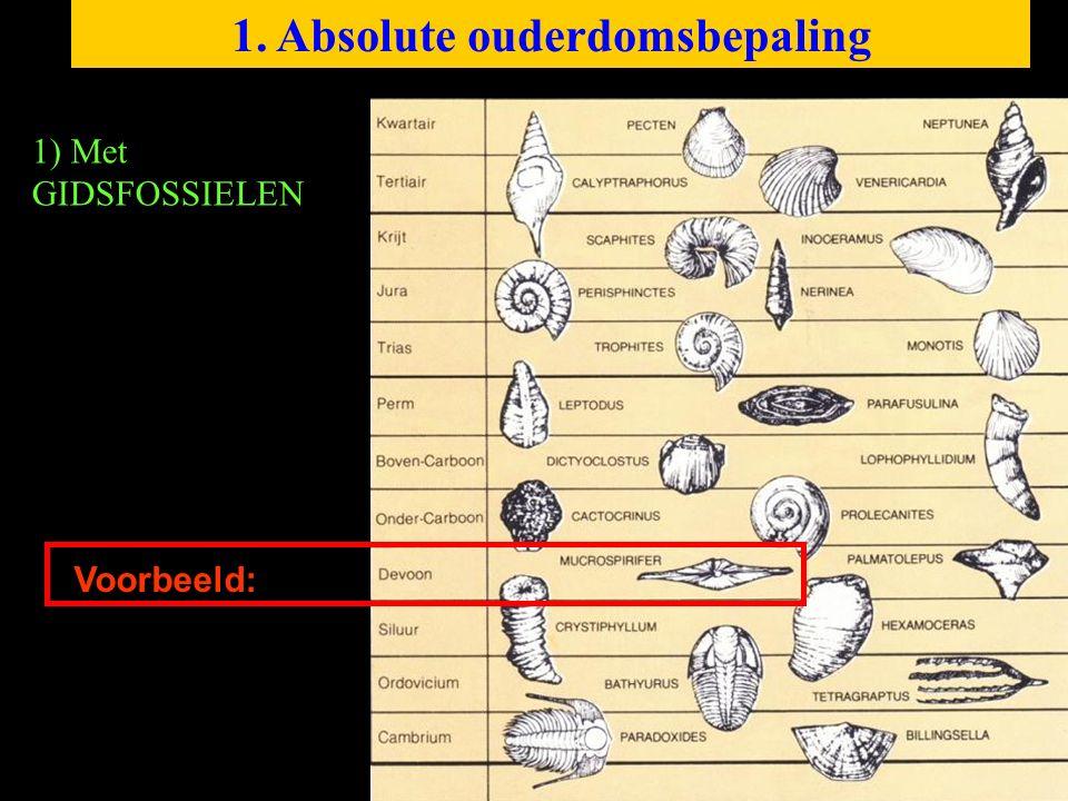 1. Absolute ouderdomsbepaling 1) Met GIDSFOSSIELEN Voorbeeld: