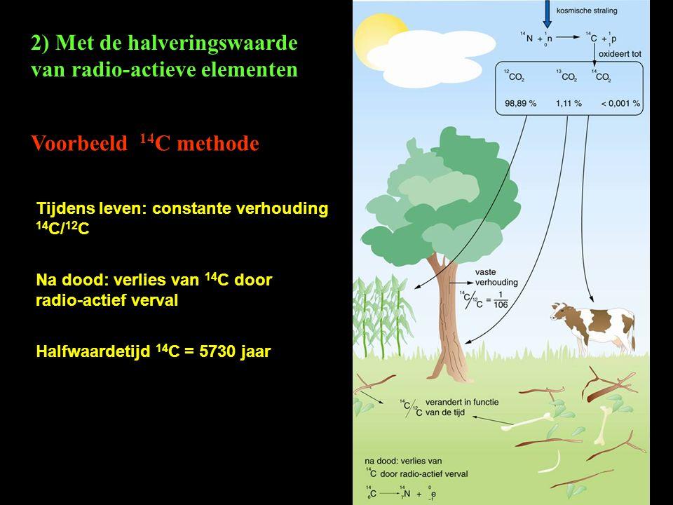 2) Met de halveringswaarde van radio-actieve elementen Voorbeeld 14 C methode Tijdens leven: constante verhouding 14 C/ 12 C Na dood: verlies van 14 C