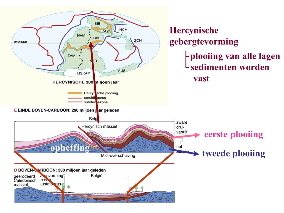 Hercynische gebergtevorming plooiing van alle lagen sedimenten worden vast tweede plooiing eerste plooiing opheffing