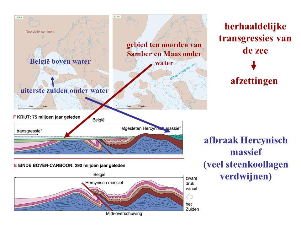 afbraak Hercynisch massief (veel steenkoollagen verdwijnen) herhaaldelijke transgressies van de zee afzettingen België boven water uiterste zuiden ond