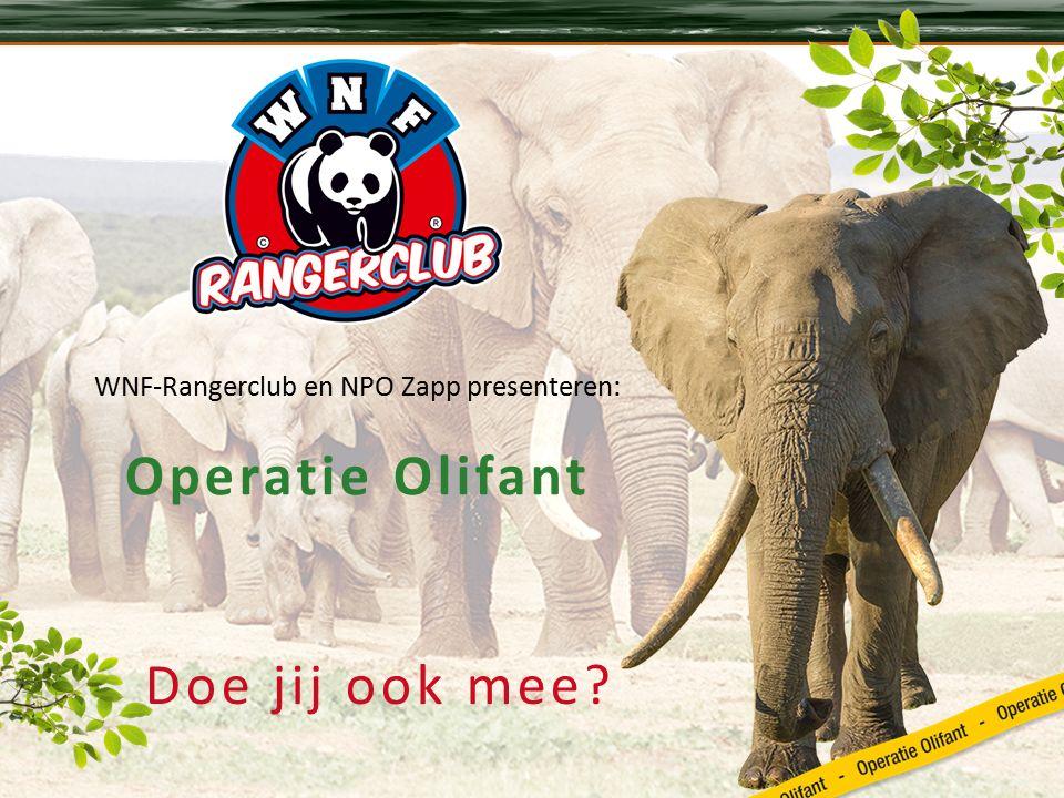 Doe jij ook mee WNF-Rangerclub en NPO Zapp presenteren: Operatie Olifant