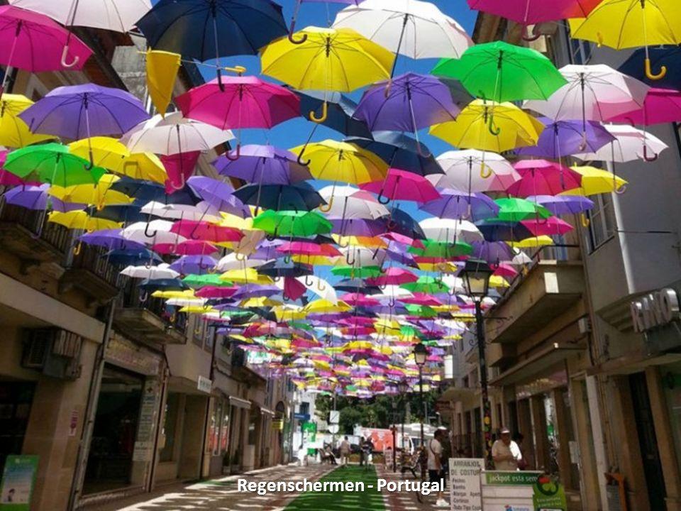Regenschermen - Portugal