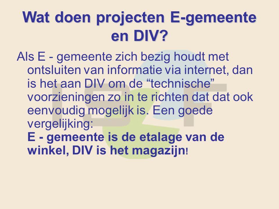 Wat doen projecten E-gemeente en DIV.