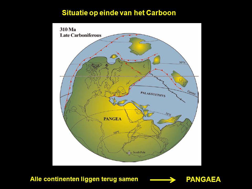 Situatie op einde van het Carboon Alle continenten liggen terug samen PANGAEA