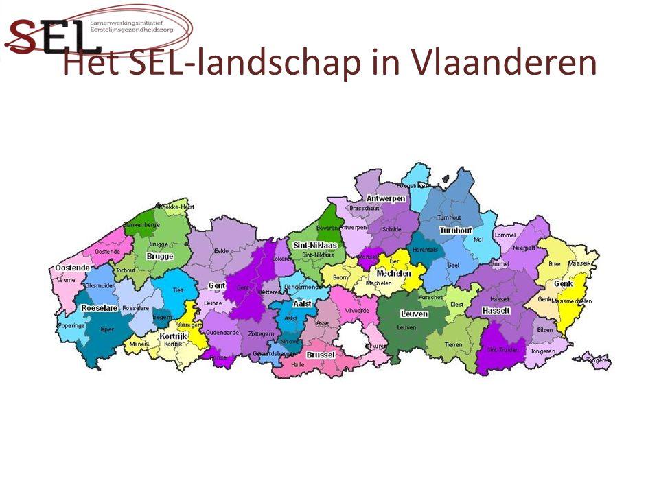 Het SEL-landschap in Vlaanderen
