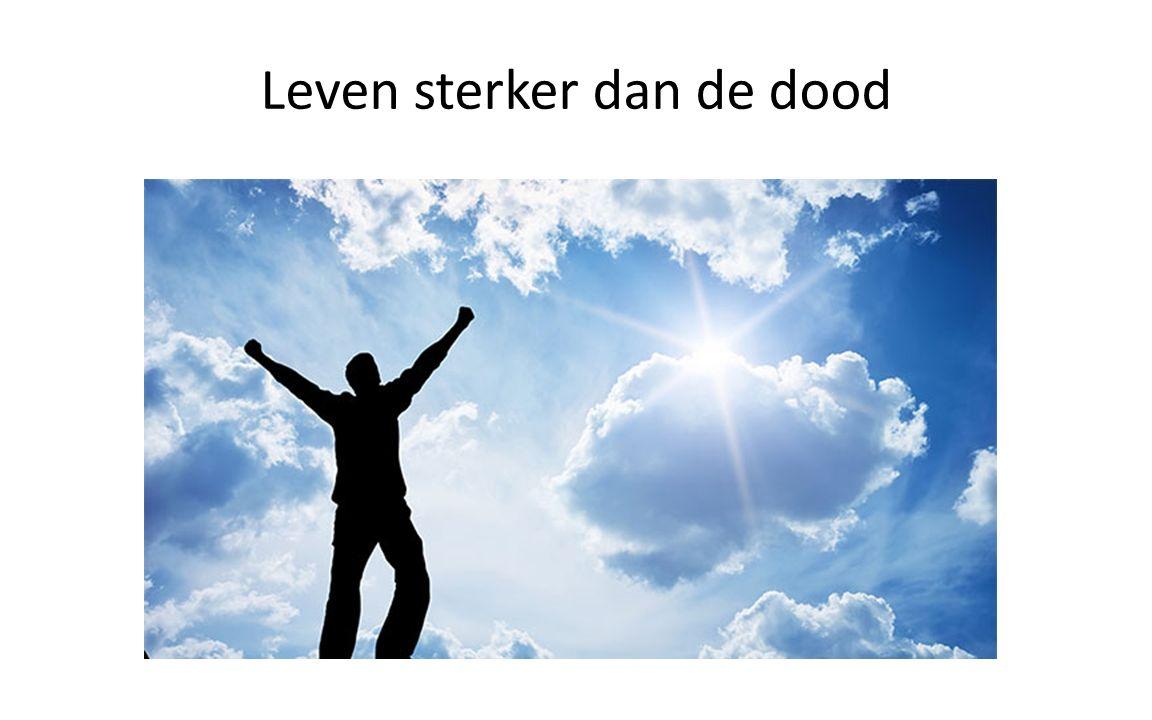 Leven sterker dan de dood