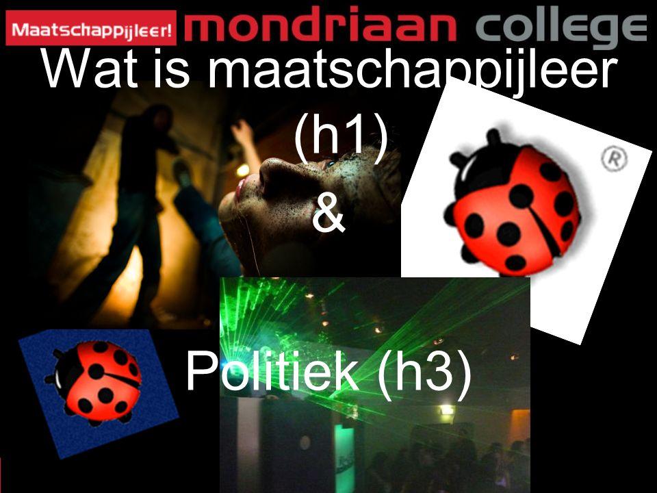 1 Wat is maatschappijleer (h1) & Politiek (h3)