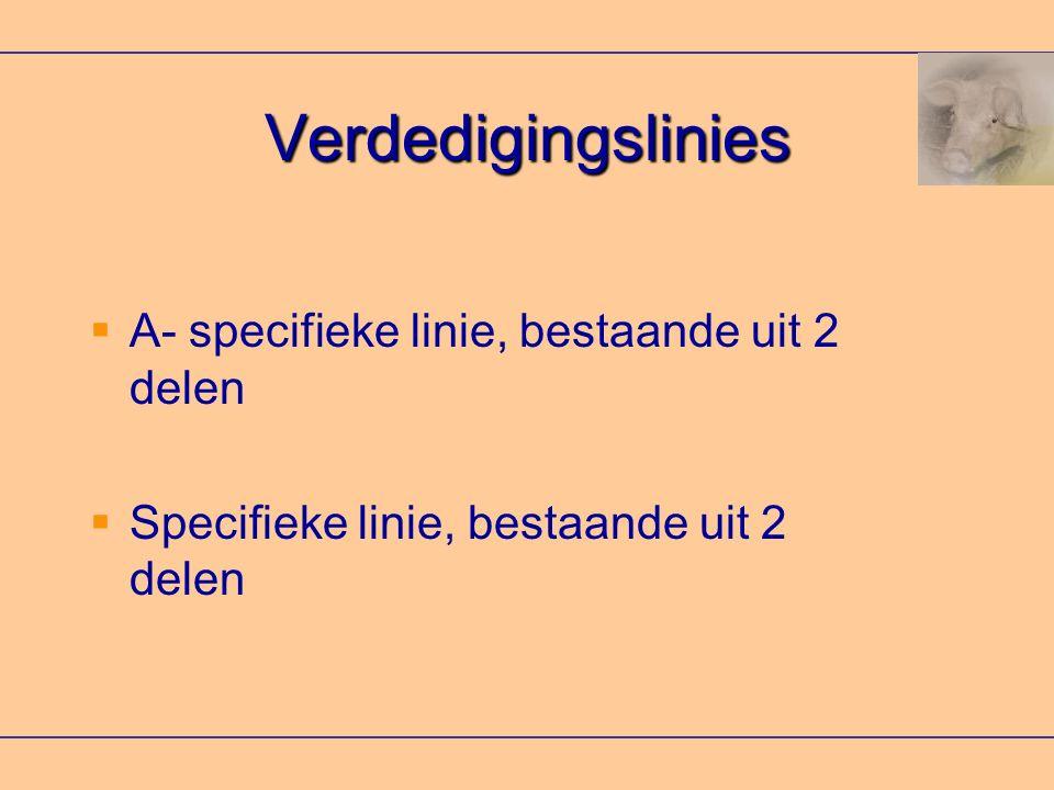 Verdedigingslinies  A- specifieke linie, bestaande uit 2 delen  Specifieke linie, bestaande uit 2 delen