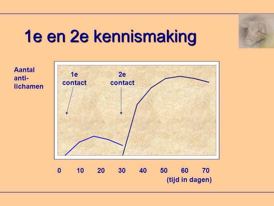 1e en 2e kennismaking Aantal anti- lichamen 0 10 20 30 40 50 60 70 (tijd in dagen) 1e contact 2e contact