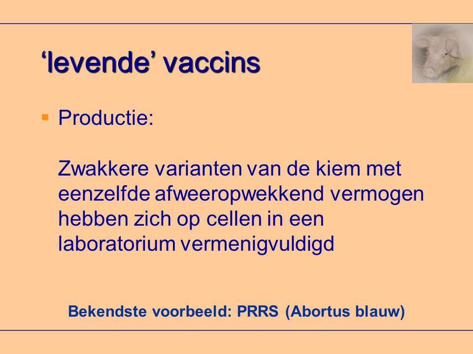 Bekendste voorbeeld: PRRS (Abortus blauw) 'levende' vaccins  Productie: Zwakkere varianten van de kiem met eenzelfde afweeropwekkend vermogen hebben zich op cellen in een laboratorium vermenigvuldigd
