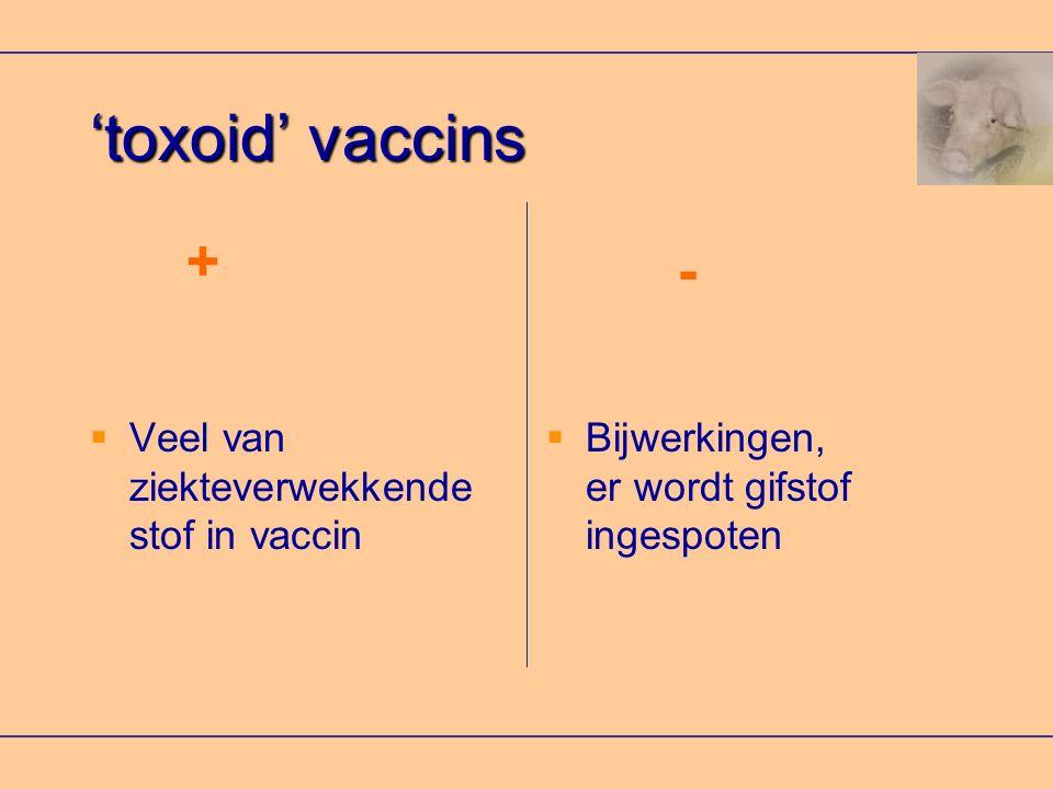 'toxoid' vaccins  Veel van ziekteverwekkende stof in vaccin  Bijwerkingen, er wordt gifstof ingespoten + -