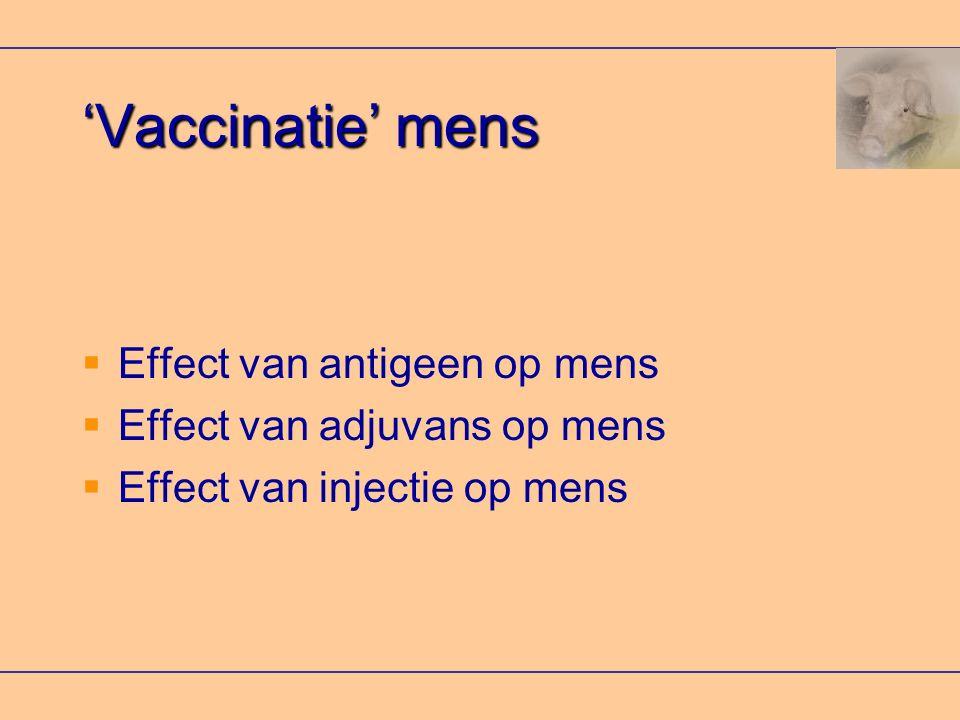 'Vaccinatie' mens  Effect van antigeen op mens  Effect van adjuvans op mens  Effect van injectie op mens